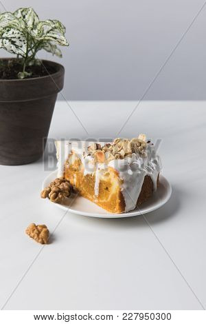 Cake On Plate And Walnuts With Potted Plant On Grey