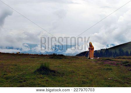 Shepherd With Her Herd In The Tunic