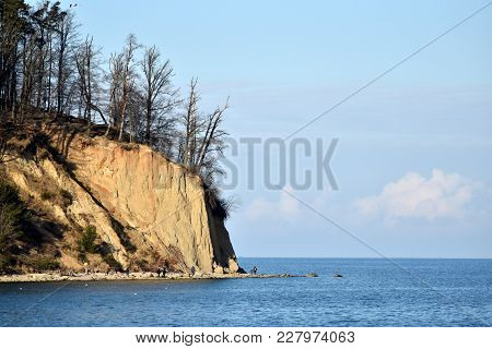 Cliff In Gdynia, Poland, Baltic Sea Coastline