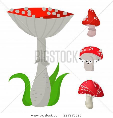 Style Of Amanita Mushrooms Set Vector Poisonous Season Toxic Fungus Food Cartoon Muscaria, Toadstool