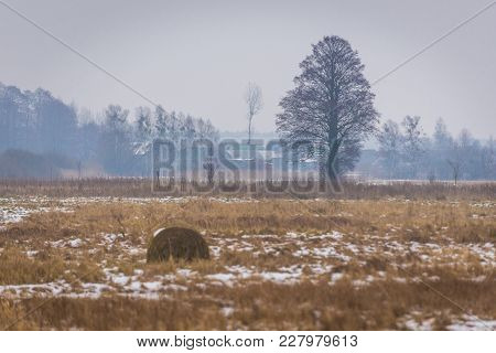 Winter Landscape In Ordynki Vilage, Podlasie Region Of Poland
