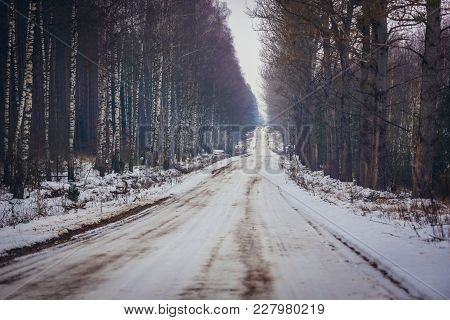 Country Road In Podlasie Region Of Eastern Poland