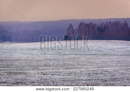 Fields Covered With Fresh Snow In Podlasie Region Of Poland, Close To Border With Belarus