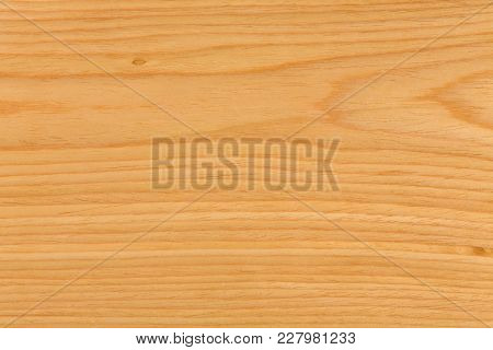 Texture Of Natural Oak Wood. Extremely High Resolution Photo.