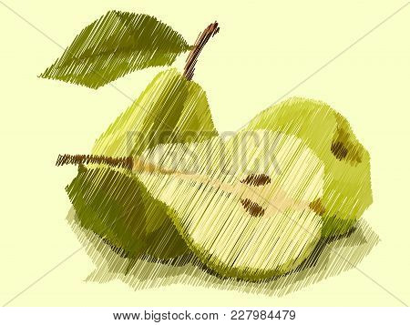 Vector Illustration Graphic Arts Sketch Of Drawing Fruit Pears With Half.