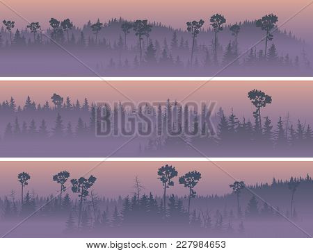 Set Of Horizontal Banners Of Coniferous Forest Valley In The Fog (purple Sunrise).