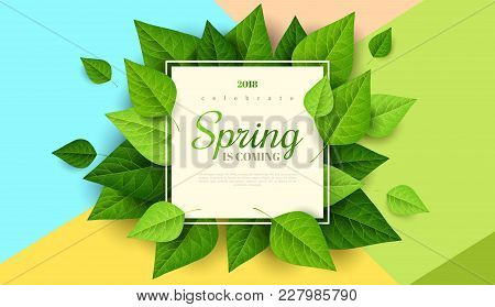 Spring Background With Green Leaves And Square Frame On Trendy Geometric Backdrop. Vector Illustrati