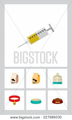 Icon Flat Pets Set Of Syringe, Birdcage, Feeding Box And Other Vector Objects. Also Includes Food, B