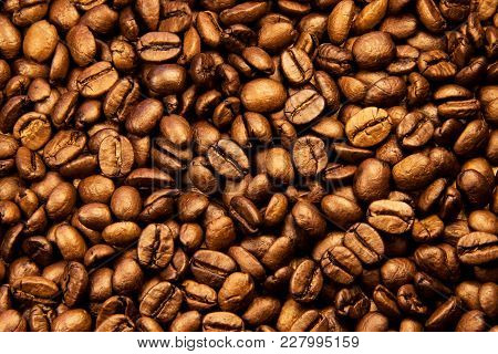 Coffee Texture. Beautiful Arabica Real Cofee Bean Illustration For Any Concept. Roasted Coffee Beans