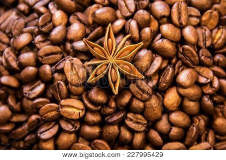 Beautiful Arabica Real Cofee Bean Illustration For Any Concept.