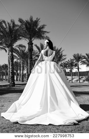 Elegance And Fashion Model. Wedding Fashion And Beauty Salon. Bride And Wedding Ceremony. Woman In W