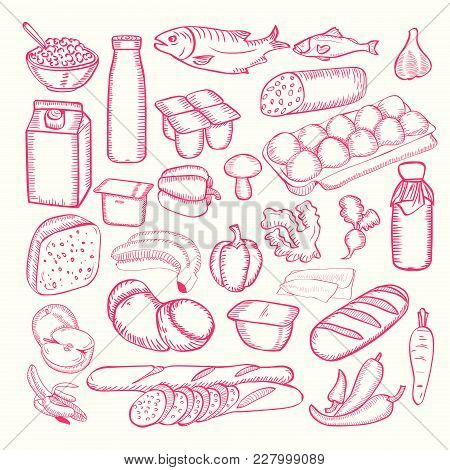 Diary Food Doodles Collection. Vector Doodle Set Hand Drawn. Organic Food Set. Different Kinds Of Di