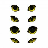 Cat emotions eyes realistic set of isolated images with open and half-closed feline eyes vector illustration poster