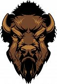Graphic Mascot Image of a Buffalo Bison Head poster