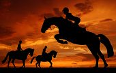 silhouette of a rider on a jumping horse poster