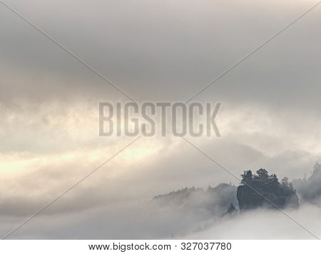 Forest. Green Mountain Forest Landscape. Misty Mountain Forest. Fantastic Forest Landscape. Mountain