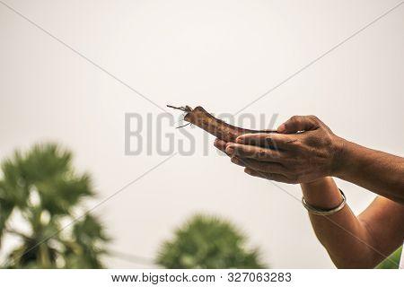 Image Of The Hands Of A Young Man Praying In The Morning Holding Kosha Kushi. Kosha Kushi Is Used To