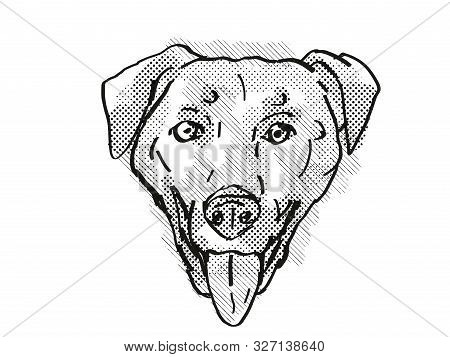 Retro Cartoon Style Drawing Of Head Of A Chinook , A Domestic Dog Or Canine Breed On Isolated White
