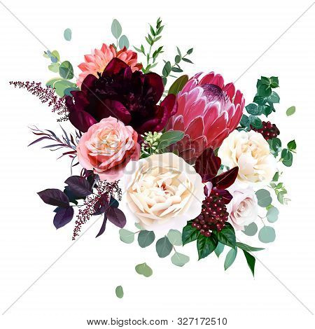 Luxury Fall Flowers Vector Bouquet. Protea Flower, Garden Rose, Burgundy Red Peony, Peachy Coral Dah