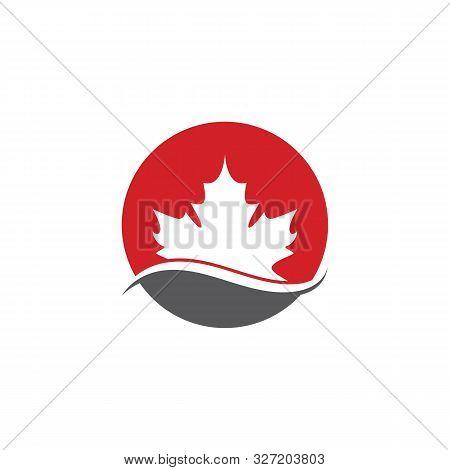 Maple Leaf Vector Icon. Maple Leaf Vector Illustration