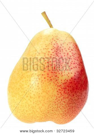 Single a orange fresh pear of non-condition form. Isolated on white background. Close-up. Studio photography. poster
