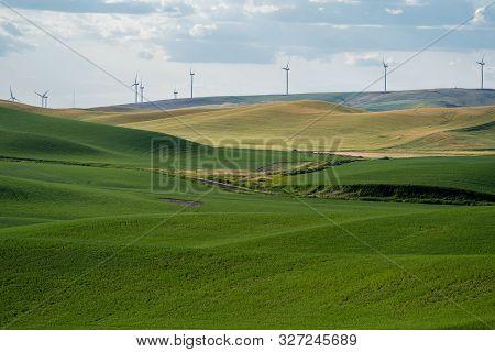 Farmland And Grasses, With Wind Turbines In The Palouse Region Of Washington State, Near Colfax, Wa