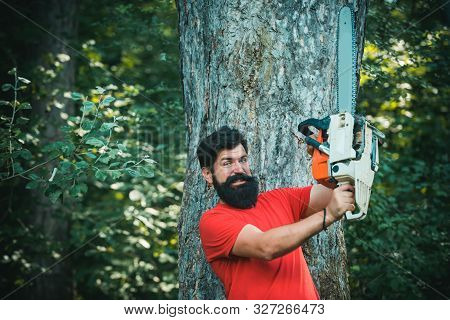 Lumberjack Worker With Chainsaw In The Forest. Lumberjack On Serious Face Carries Chainsaw. The Lumb
