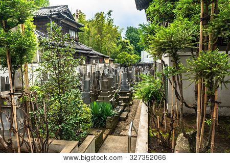 Tokyo, Japan, Asia - August 25, 2019 : The Garden Around The Shoshunji Temple