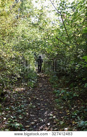 Man Walking On A Footpath With Lush Vegetation By Early Fall Season