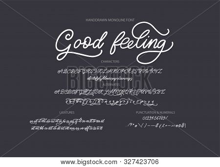 Hand Drawn Calligraphic Vector Monoline Font. Distress Signature Letters. Modern Script Calligraphy
