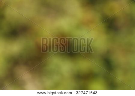 Abstract Green Colors. Horizontal Color Abstract Background. Colorful Texture Background Texture. Bl
