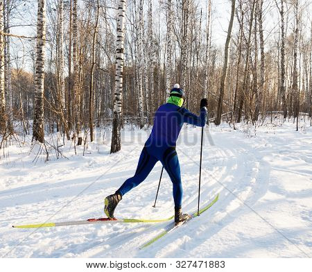 Cross-country Skiing Training In The Winter Forest, A Good Suit For Training On A Bright Sunny Day.