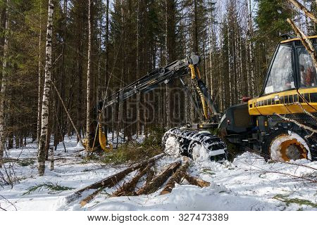 Woodworking In Forest. Image Of Logger Works