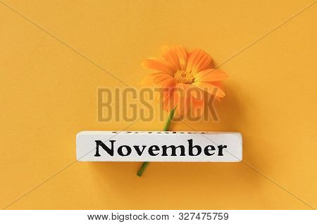 One Orange Calendula Flower And Calendar Autumn Month November On Yellow Background. Top View Copy S