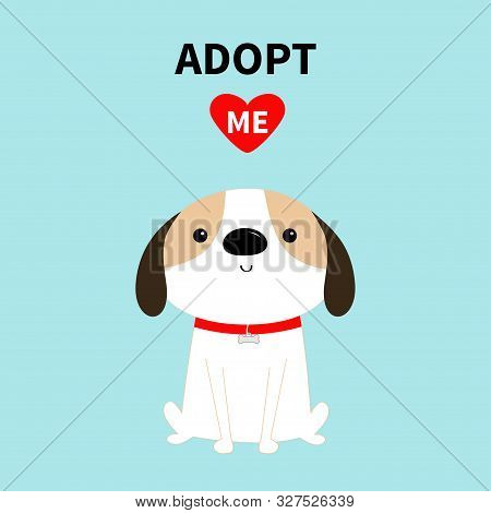poster of Adopt me. Dog sitting. Red collar. White puppy pooch. Cute cartoon kawaii funny baby character. Flat design style. Help homeless animal concept. Pet adoption. Blue background. Isolated. Vector