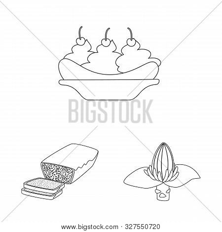 Vector Illustration Of Organic And Potassium Icon. Set Of Organic And Diet Stock Vector Illustration
