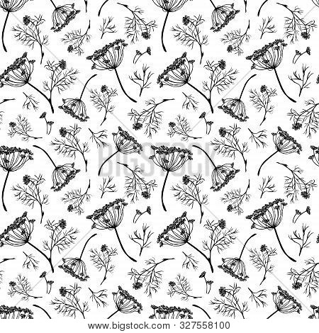 Seamless Pattern Of Watercolor Dill Flowers And Leaves. Greenery Background. Flavouring Herb For Coo