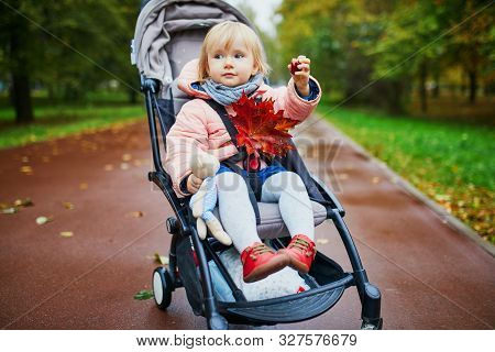 Adorable Little Girl In Pushchair With Red Maple Leaves. Toddler Having Fun Outdoors On A Fall Day.