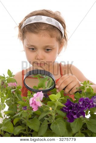 Young Girl Is Looking Through A Magnifying Glass Flower