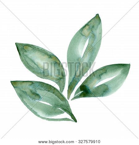 Watercolor Green Leaf Nature Ecology Sign Isolated On White Background. Hand Painting Illustration W