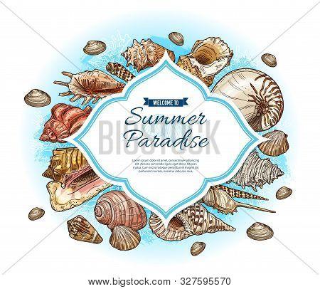 Summer Paradise Vector Card With Seashell And Marine Coral Sketches. Tropical Ocean Beach Sea Shells