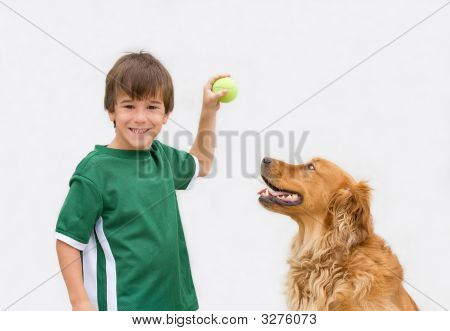 Little Boy Playing Fetch With His Dog poster