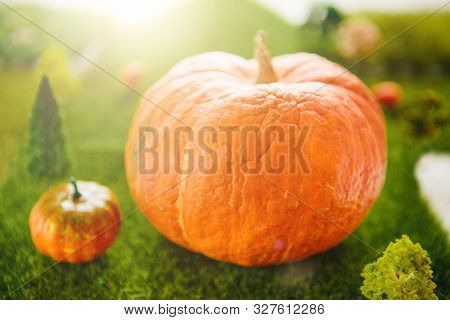 Orange Plastic Pumpkins On A Green Meadow With Green Grass. Macro Shooting. Fairy Tale.