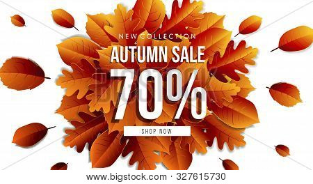 Autumn Sale Horizontal Banner Tamplate. Fall Leaves Flyer, Poster, Card, Label Design. Vector Illust