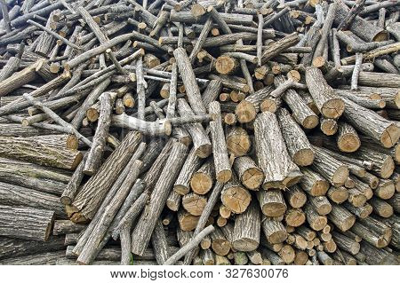 Firewood On The Crowd