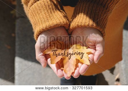 Happy Thanksgiving Day With Maple Leave On Woman Hand And Text