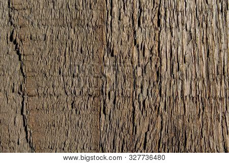 Wooden Plank Rough Texture Closeup With Splinters. Natural Background With Copy Space For Text. Hard