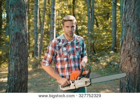 Lumberjack In The Woods With Chainsaw Axe. Lumberjack Worker Walking In The Forest With Chainsaw. Il