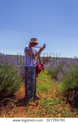 Caucasian Woman With Hat Shooting Photos Of Lavender Bushes With Her Mobile On A Sunny Day.