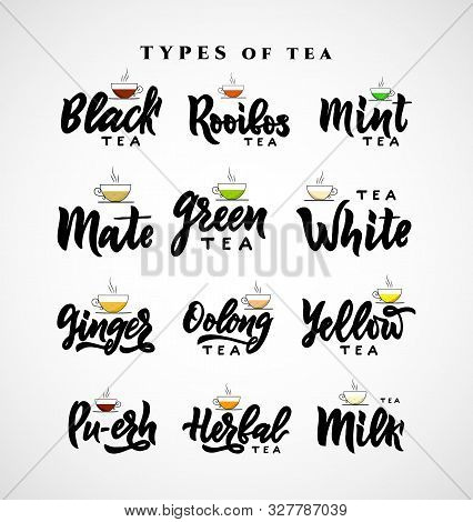Set Different Types Of Name Tea. Hand Calligraphy Lettering With Cups. Vector Illustration. Template